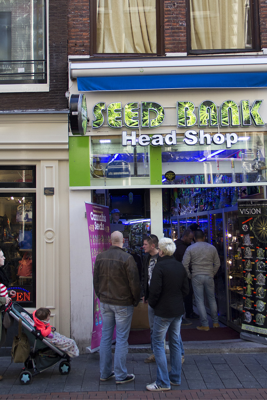 Pildi vasakus servas ema koos väikse lapsega möödumas rohelise alatooniga poekesest. Sarnane olukord oli ka punaste laternate tänaval, kui ema tuli oma 10-aastase pojaga meile vastu ning poisil jäi korra pilk aknal seisvatele tädidele pidama. Kahjuks ei ole endal ühtki hollandlasest tuttavat, kellega seda teemat arutada. Huvitav oleks teada, mis Hollandis lastele marihuaana ja prostitutsiooni teemadel räägitakse.