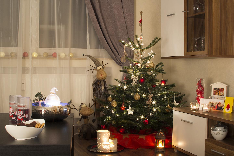Meie jõulupuu. Müügiplatsil loetles härra meile kõik pakutavad puuliigid ette. Aga no meelde ei jäänud ja päris täpselt ei teagi, mis ta nüüd on. Nulg või midagi sellelaadset. Kuusest tihedama ja suurema okkaga. Härra arvas, et vett pole vaja jõulupuule panna. Mõtlesime, et katsetame siis. Nädal on ta meil siiani toas olnud ja ühtegi okast pole veel maha kukkunud. Vapper.