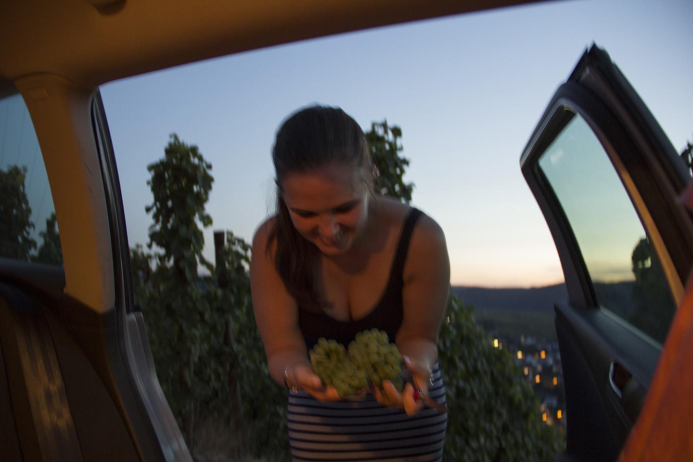 Eglel oli suur soov haarata kaasa väike kobar päris õigeid veinitegemise viinamarju. Mission accomplished! Loodame, et maaomanik ei pahanda :)