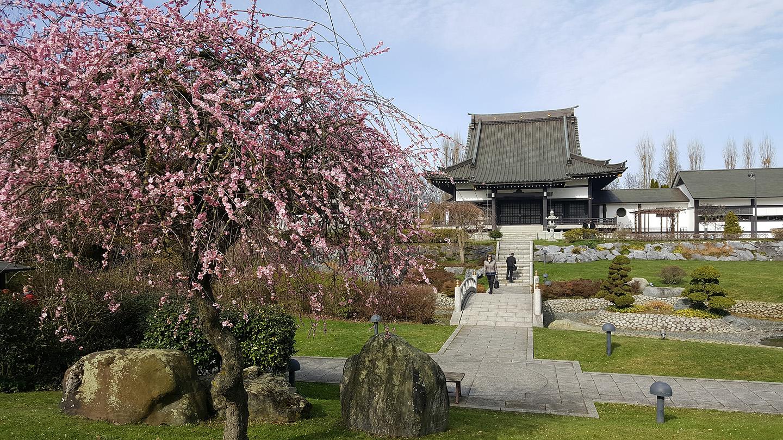 EKŌ-Haus der Japanischen Kultur. Düsseldorf, Niederkassel.